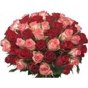 Букет від 51 рожевих і червоних троянд